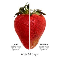 Strawberry Side-by-Side Freshness Graphic